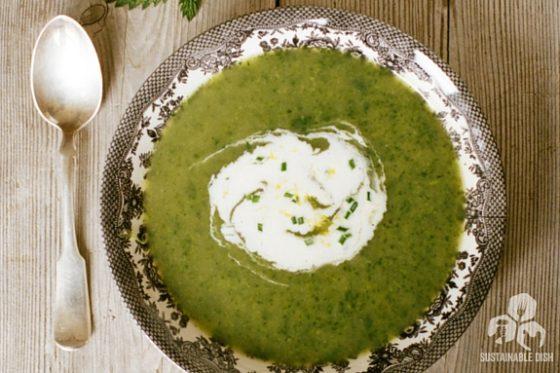 Stinging Nettle Soup with Lemon Chive Crème Fraiche