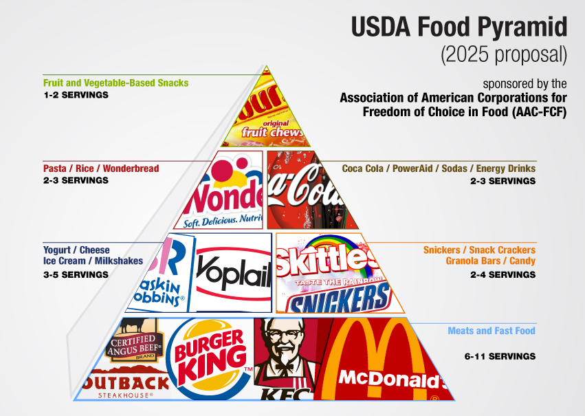 Image result for government food pyramid