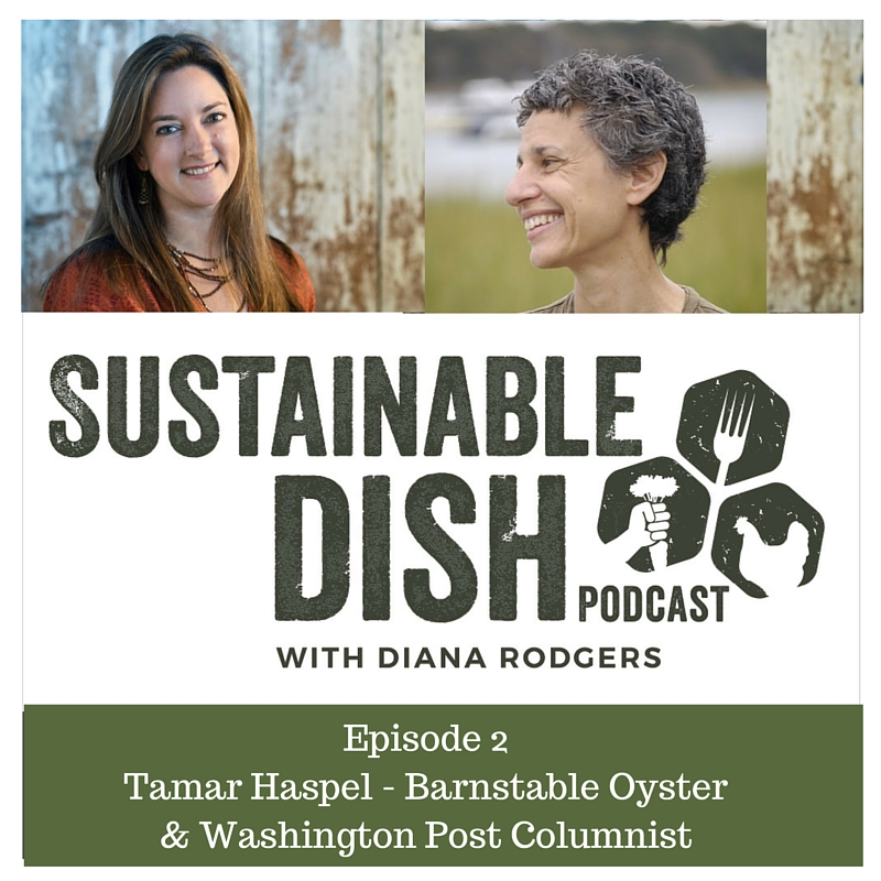diana rodgers tamar haspel podcast