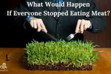 stopped eating meat