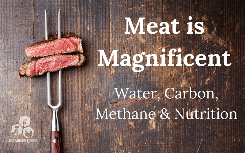 meat is magnificent SD