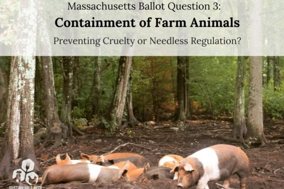 Massachusetts Ballot Question 3: Containment of Farm Animals: Preventing Cruelty or Needless Regulation?