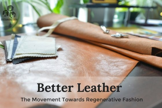 Better Leather: The Movement Towards Regenerative Fashion