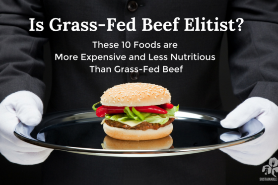 Is Grass-Fed Beef Elitist? These 10 Foods are More Expensive and Less Nutritious Than Grass-Fed Beef
