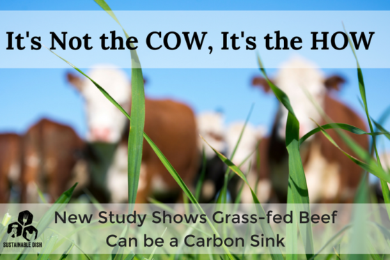 It's Not the COW, it's the HOW: New Study Shows Grass-fed Beef Can be a Carbon Sink